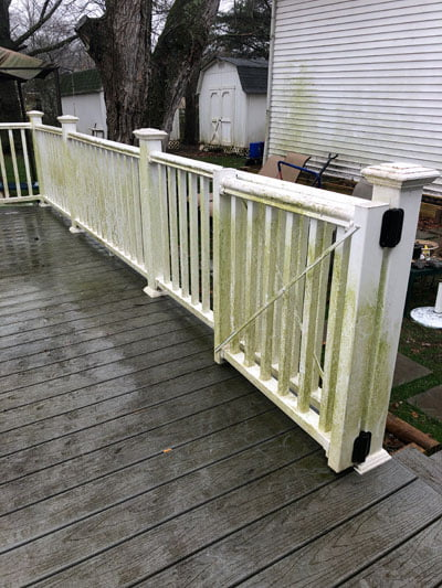 Deck-Fence-Cleaning-before6