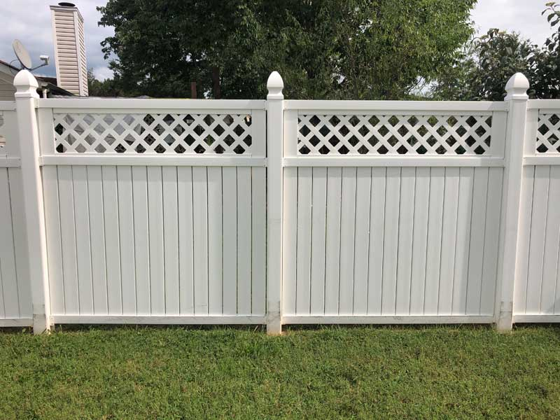 Fence-Cleaning-after1