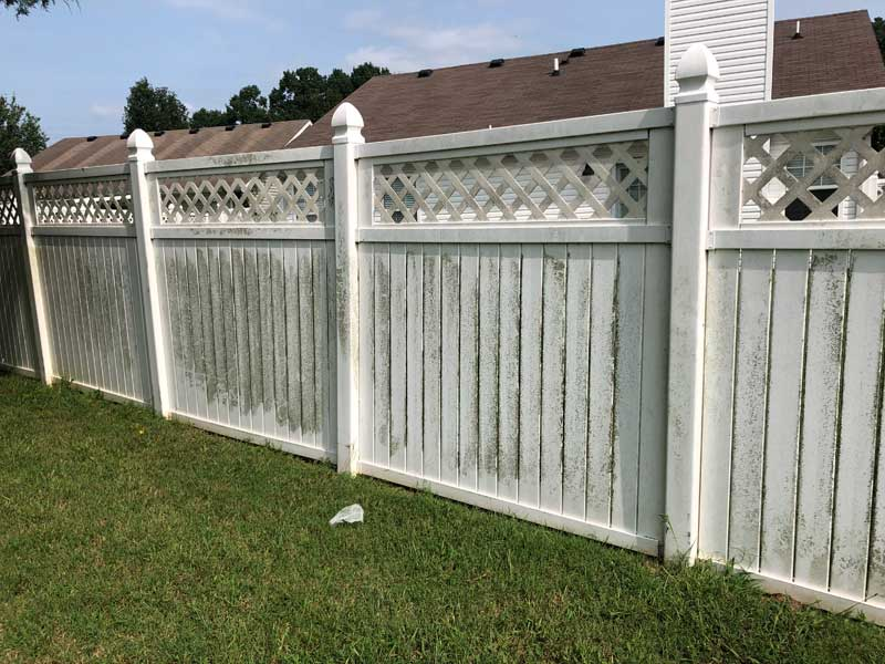 fence cleaning before