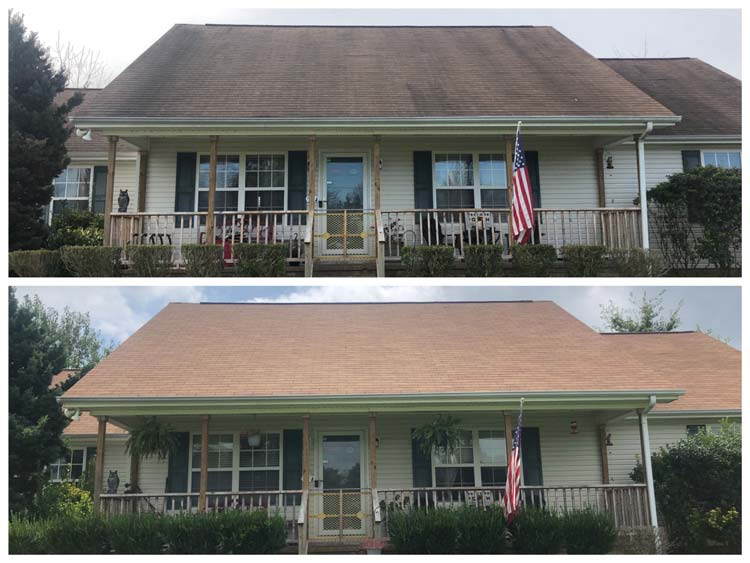 roof wash before and after